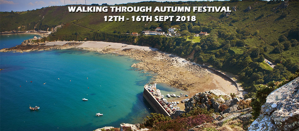 Walking Through Autumn Festival – Eastern Wonders